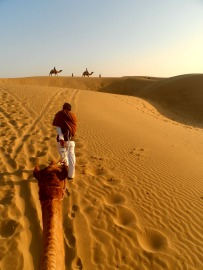 A camel ride in the Thar Desert, India
