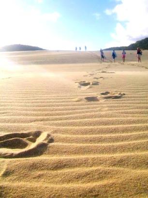 Exploring Fraser Island, Australia