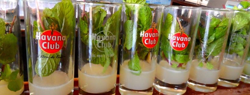 Mojito La Bodeguita del Medio Havana Cuba