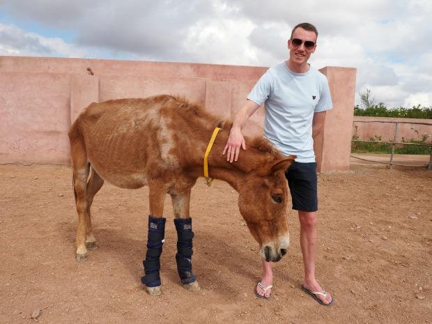 Jarjeer Mules Marrakech